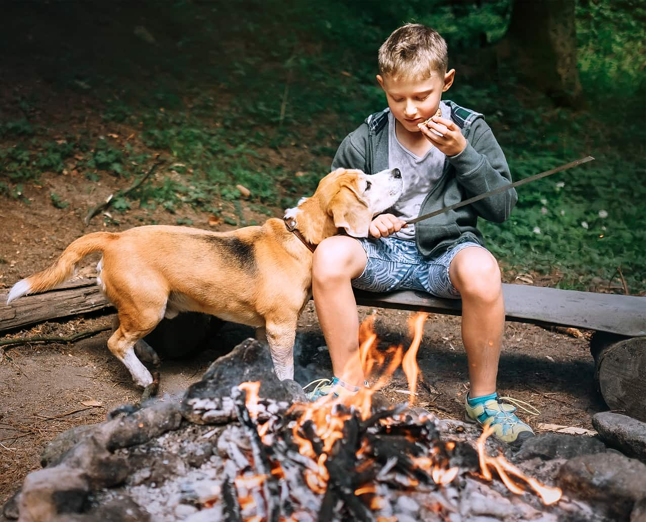 Boy sitting and eating with a stick next to firepit while beagle sniffs at food.