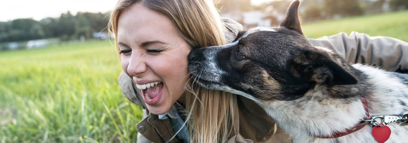 Dog Bad Breath: What Could Be the Cause?   Hill's Pet