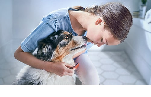 girl putting collar on dog