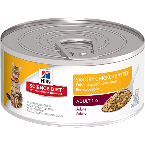 Dry Cat Food With Soft Center
