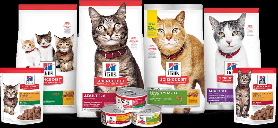 science diet cat food er