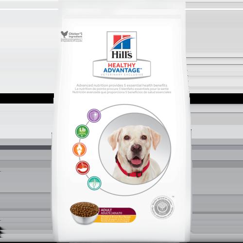 Healthy Dog Food That Tastes Good
