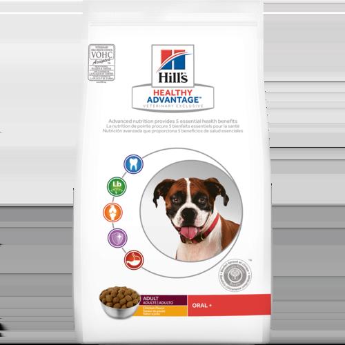 Best Dog Food For Health And Taste