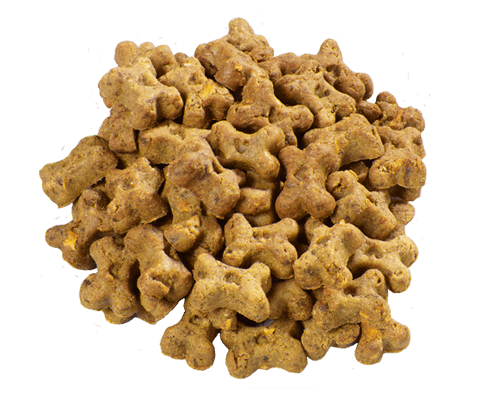 Natural Balance Grain Free Dog Treats