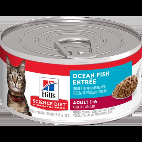 science diet cat wet food tray