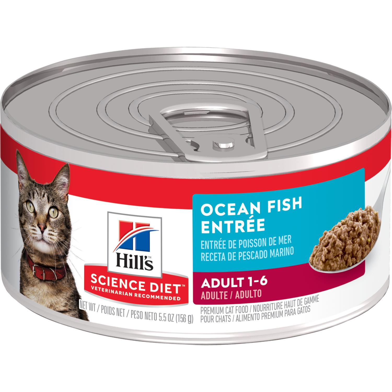 fish oil cat food science diet