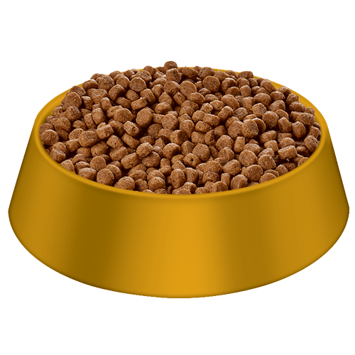 Now Small Breed Senior Dog Food