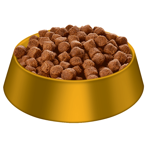 Natural Food For Dogs Joints