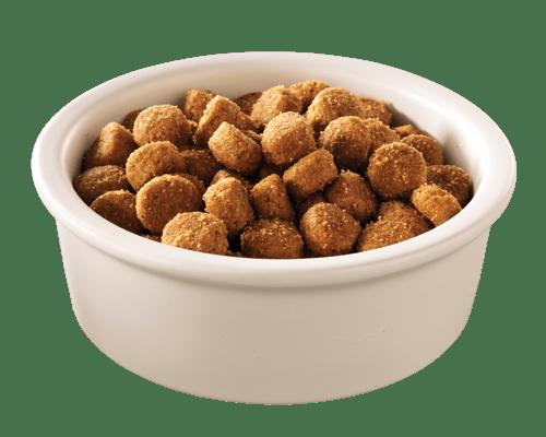 Raw Dog Food Vitamins
