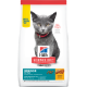 sd-feline-kitten-indoor-dry